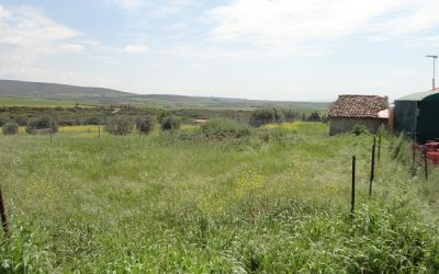 Plot of 902 sq.m. at Rodokipo Halkidiki for sale.