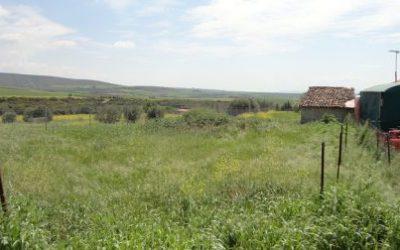 Grundstück von 902 qm auf Rodokipo Chalkidiki zum Verkauf