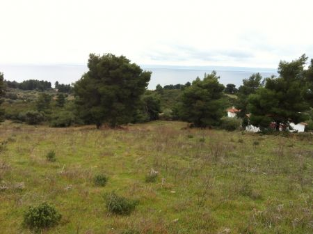 Parcel of 24.000 sq.m. at Sithonia Halkidiki (Metamorfosi) for co-management.